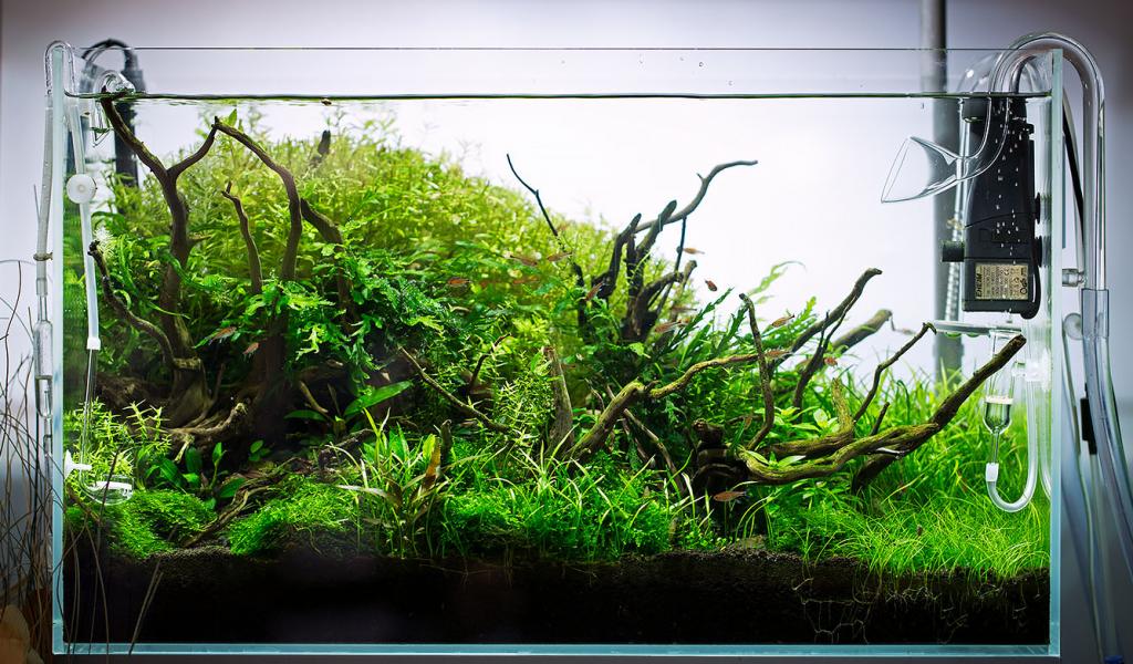 filtros-aquaris-1024x600