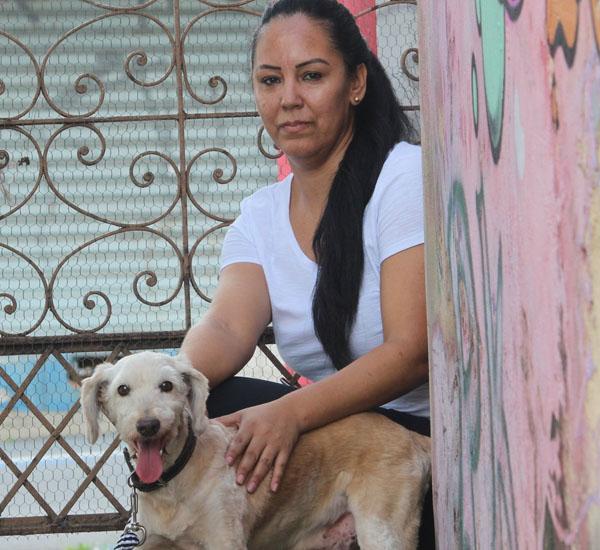 cachorro-foge-e-vai-parar-em-casa-de-familia-que-estava-de-luto-por-animal-falecido-pdd1