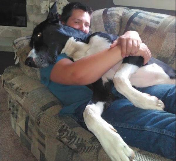 cachorro-acorda-tutores-e-salva-toda-a-sua-familia-de-grande-incendio-pdd4