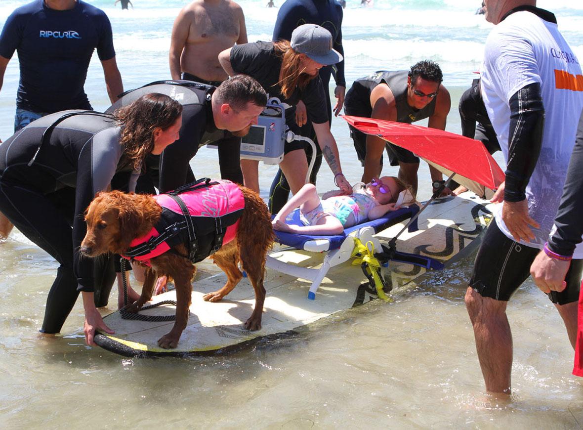 cadela-surfa-com-criancas-com-atrofia-muscular-espinhal-e-proporciona-muita-felicidade-aos-pacientes-pdd1