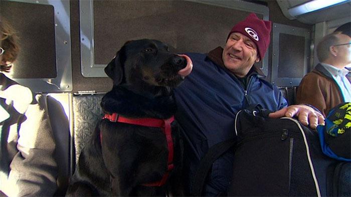 dog-rides-bus-seattle-eclipse-5948d579c94b7__700