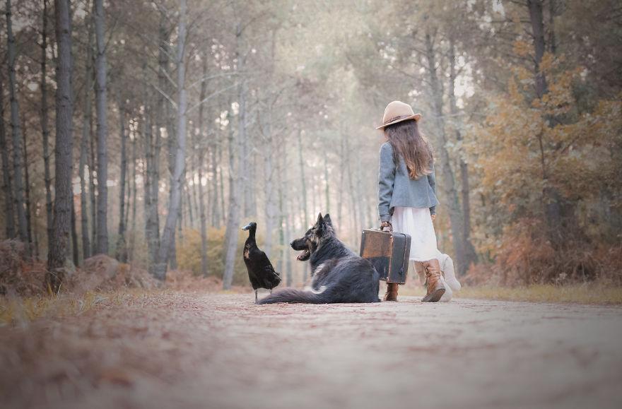 amizade-cachorro-pato13