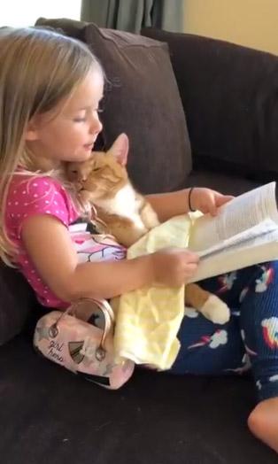 menina-le-historia-gato4
