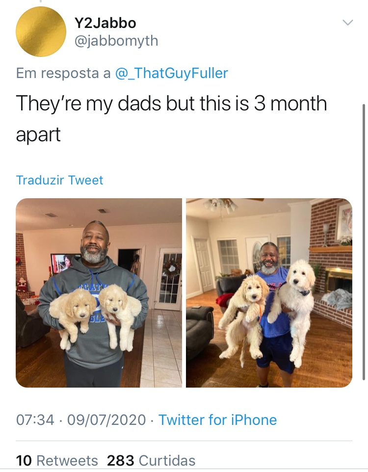Cao-Antes-Depois-Reproducao-Twitter-11