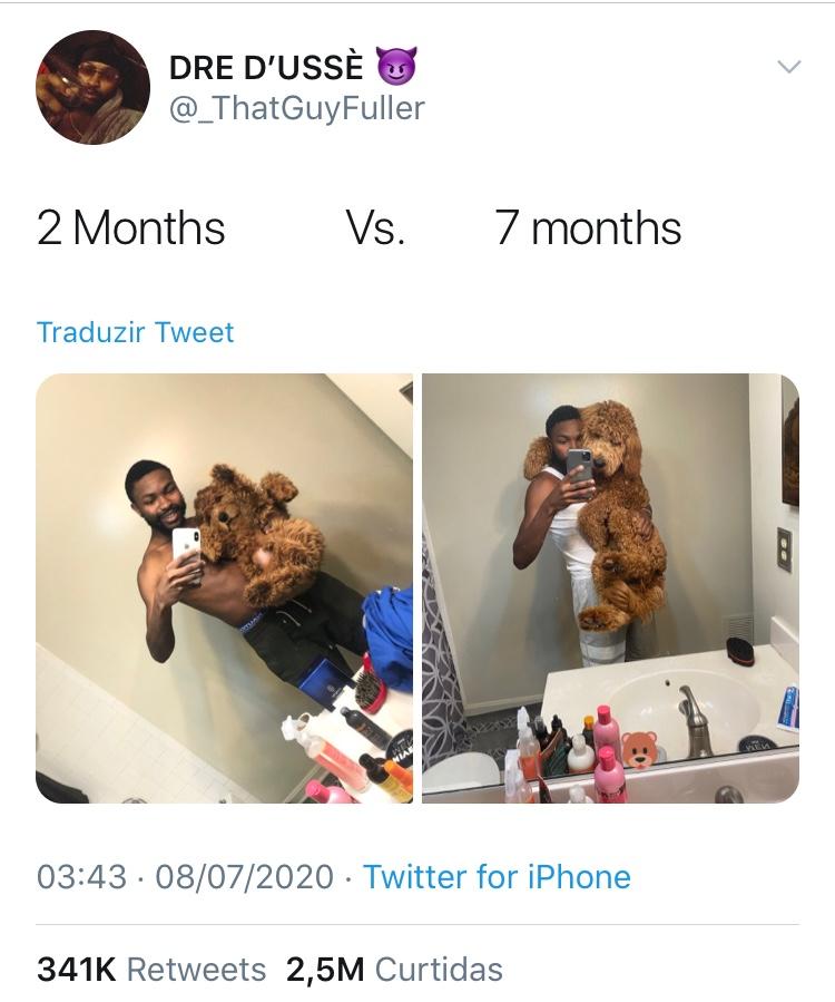 Tweet-Cachorro_ThatGuyFuller-Reproducao-Twitter