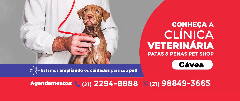 ClinicaVet-Gavea-PeP_banner_vr42