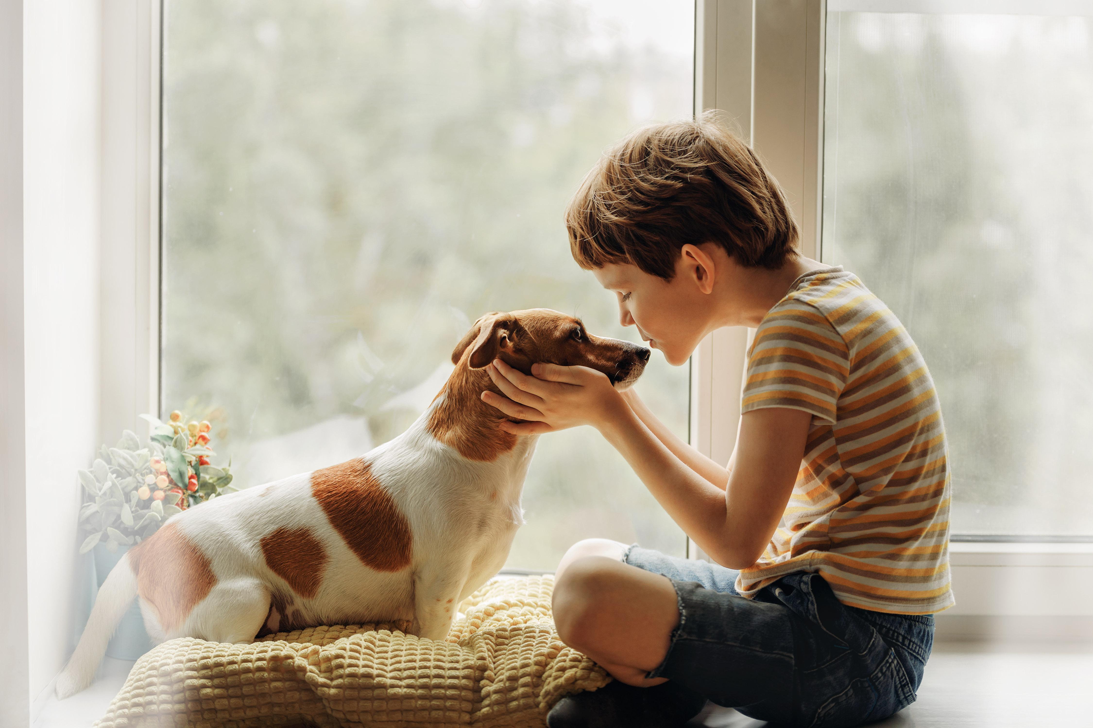 Estudo: Cães podem melhorar o desenvolvimento socioemocional em crianças