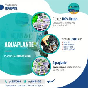 Aquaplante_2021_fb