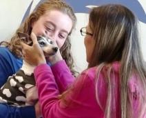 Mulher reencontra cachorro perdido há 12 anos com ajuda de microchip