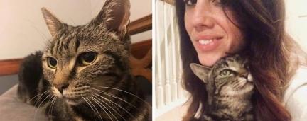 Mulher reencontra seu gato desaparecido há 13 anos