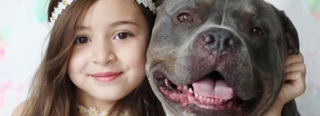 Cãozinho não consegue ficar longe de menina que o adotou