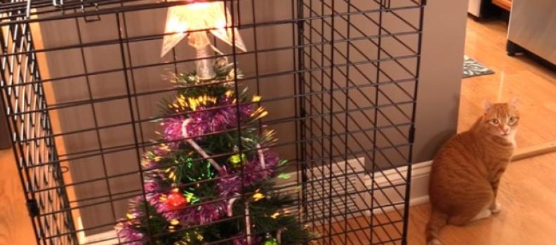 12 jeitos geniais de proteger sua árvore de natal de pets destruidores