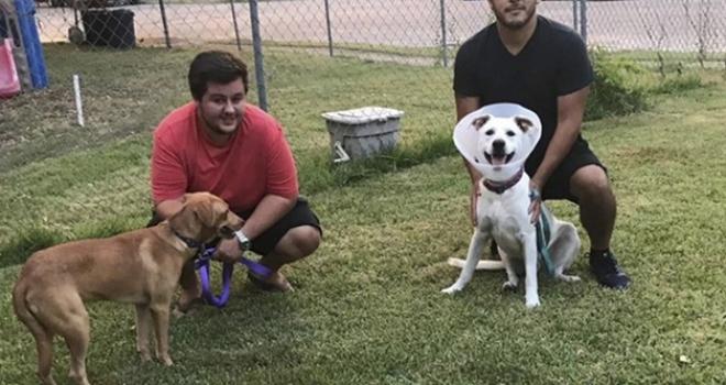 Jovem enfrenta furacão para salvar 2 cachorros deixados para trás
