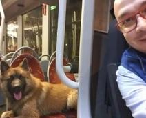Motorista dá carona para cãozinho perdido voltar pra casa