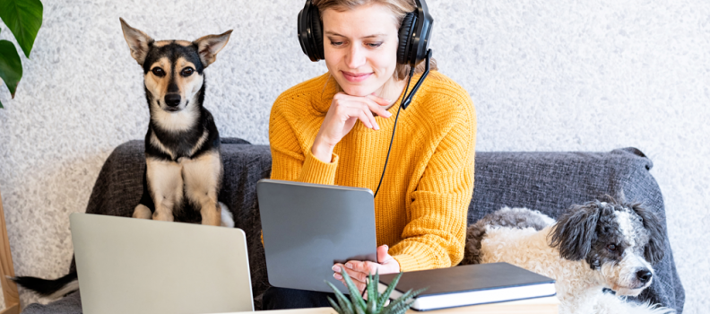 Estudo: Cães podem ajudar no aprendizado de estudantes