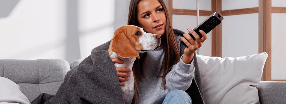 Estudo: Pets causam efeitos positivos na vida dos tutores
