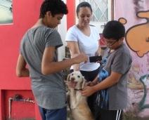 Cão foge e vai parar em casa de família que estava de luto por pet falecido