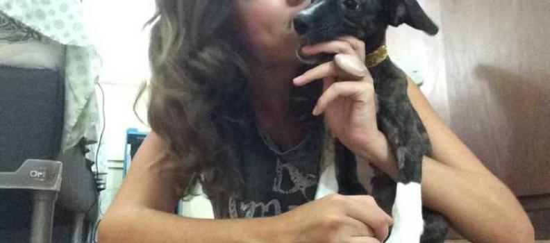 Mulher oferece ajuda à vizinha após cão ser ameaçado de despejo