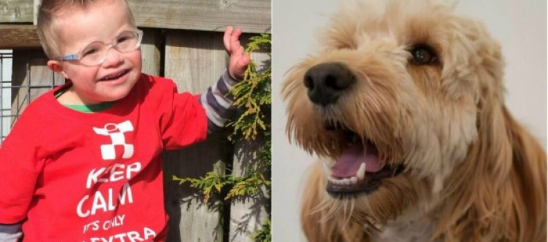 Cãozinho salva menino com síndrome de Down que ficou preso em secadora