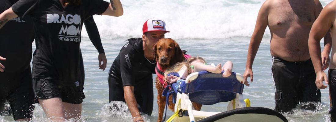 Cão surfa com crianças com Atrofia Muscular e proporciona muita felicidade aos pacientes