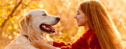 Estudo: Cachorros já nascem prontos para interagir com humanos