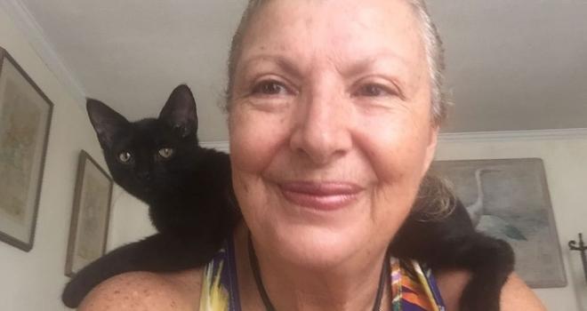 Brasileira enfrentou Furacão Irma para proteger 26 gatos e 2 cães