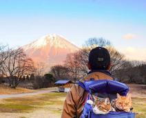 Gatinhos Viajantes: Tutor leva seus 2 gatos a passeios incríveis