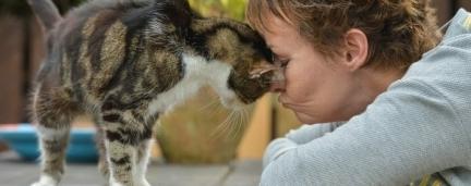 13 anos de separação: O emocionante reencontro de gato com sua humana