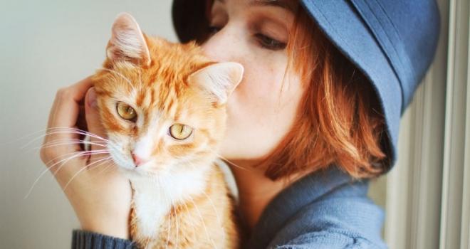 Gatos ajudam no apoio contra depressão e melhoram a autoestima do paciente