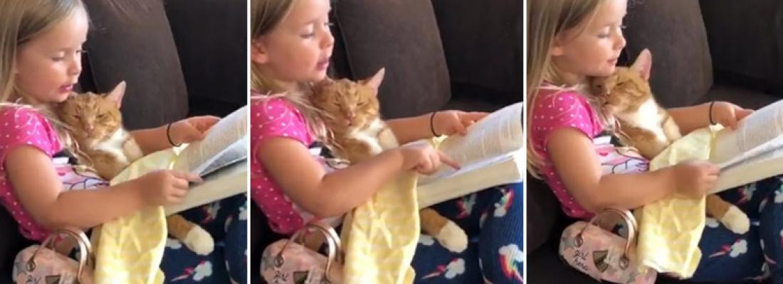 Menina lê história para seu gato dormir preguiçosamente