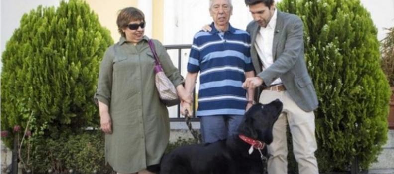 Cãozinho aprende a levar tutor com Alzheimer para casa todos os dias